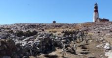 A beautiful day on Las Islas de los Penguinos