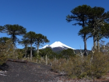 Volcan Llamia