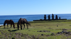 The island is now home to a large population of wild horses