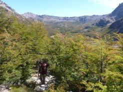 A hidden valley of beautiful woodland