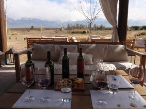 A delightful setting, with the snow covered Andes in the distance, to sample their wines