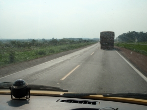 Two days driving around the edge to reach the northern entrance to the Pantanal was dominated by trucks