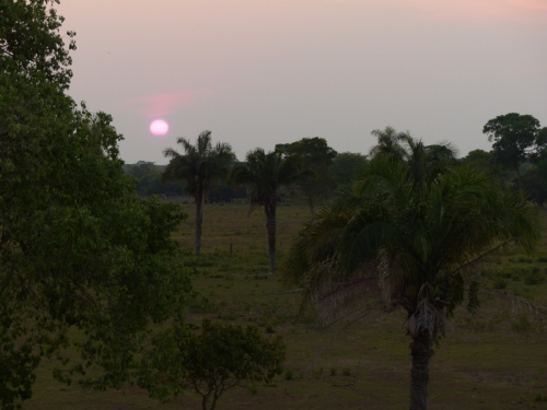 Northern Pantanal sunset