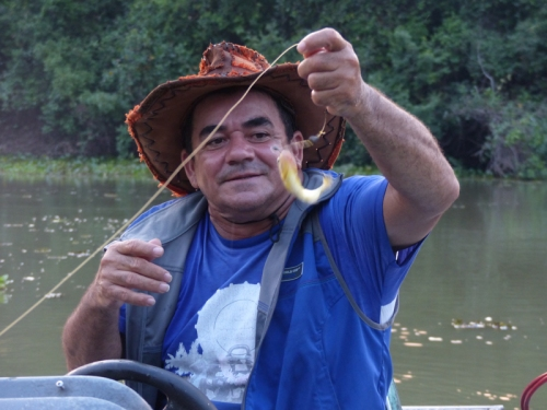 Our boat guide showing us how to catch Piranha