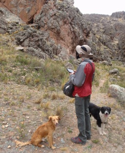 The dogs know the way to the crag at Peñas