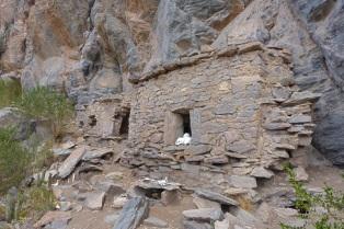 Huari tombs high up on the steep hillside