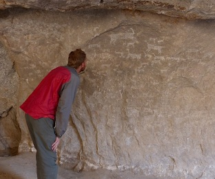 Drawings of animals scratched in the walls of the caves
