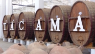 On the way north from Nazca, we popped in to the Tacama winery, the oldest in South America