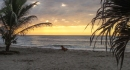 Another beautiful sunset - the Pacific coast is facing the right direction!