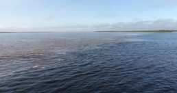 "Just outside of Manaus, the Amazon meets the Rio Negro and two different types of waters ""meet"" forming a visible boundary for quite some distance downstream"