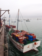 Up early to see the morning's catch being brought into the little port of Ñuro